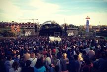 Music Festivals / by Marta Lousada