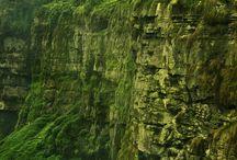 Colombian Landscapes