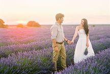 Love story in Lavender fields