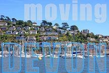 Removals to Devon