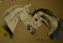 mis dibujitos y otras yerbas / retratos de caballos y demás animales