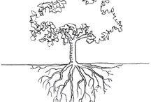 Tiedon puu