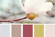 Scrapbook-Color Combinations-Flowers & Plants / by Thressa Lambert