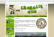 Web sites we made / Web sites we made... for information www.capriccigrafici.it
