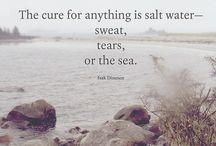Words We Find Wise