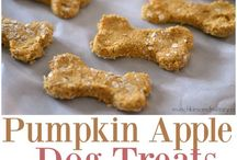 dog treats for lucy