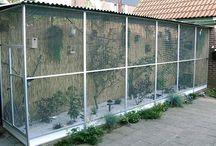 breding bird cage