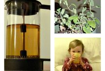Herbs: Infants, Children, and Young Adults