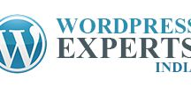 WordPress Developer | WordPress Website Development Services India / WordPress Experts India is WordPress website development company based in Gurgaon. We have WordPress developer who can customize any type of WordPress website as per requirement.