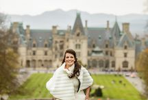 Biltmore Estate Golden Opulence / Weddings with Style!  Wendy & Robby's day of casual elegance, entertainment, and romance at the Biltmore Estate in Asheville, North Carolina. Wedding planning, coordination, and design by Style Events of Virginia Beach, Virginia. / by Style Events