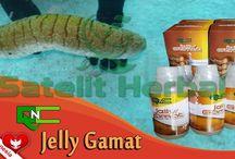 Obat Herbal / informasi seputar obat herbal