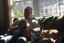 Meet our Dog Corey / We adopted our sweet caramel-colored poodle mix, Corey, from Mostly Mutts on  Feb. 13, 2016. He's a precious pooch who has brought much joy to our home. He and Bailey get along very well.