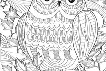 colouring owl