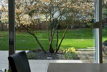 solitery w ogrodzie
