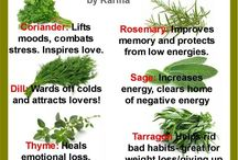 Amazing Herbs, Plants, and Trees
