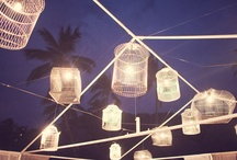 Bird Cages / by Heather Holmes