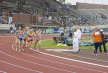 Natalia Rodríguez se retira / Una de las mejores atletas españolas de todos los tiempos, Natalia Rodríguez, deja la práctica del atletismo profesional. Un pequeño álbum homenaje a la plusmarquista nacional de 1.500 metros.