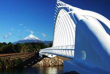 Amazing , Awesome New Zealand