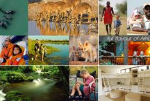 Family Safaris / The best of Family Safari Destinations in South Africa