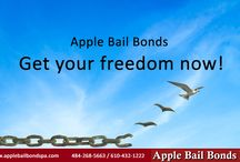 Apple bail bond