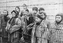 Holocaust WWII / by Voices Education Project