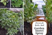 Spray for garden