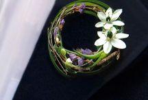 yaka çiçeği
