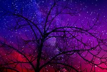 The Milky Way / The Milky Way
