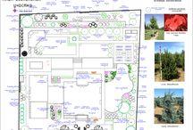 Проекты ландшафта