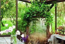 Gardens / by emine inan