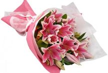 Bouquets / Whatever the occasion, our flowers will make it special! Flowers, anywhere anytime @ Shopcrazzy