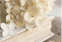 Doré*Crème*Blanc / ~*Shades Golden, Cream & White*~
