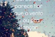 frases com borboletas