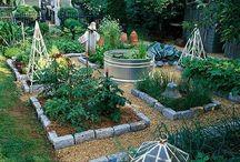 Green, Green Garden / Garden Ideas and Gardening Know-How