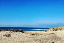 Les plages Landaises