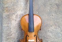 housle ( violin ) / katalog houslí - violin catalog