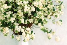 Snow Berry Wedding Flowers