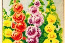 Gentle Hollyhocks / by Mary Jane Gearhart