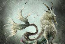 Capricorn / Ma zodiac