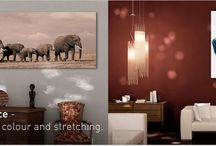 Wall Hanging Products / Riot's Canvases, Watergloss Prints and Calendars will add that unique touch to your space with only a few clicks, whether it is at home or in the office.  Find your inspiration here!