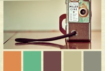 Color Palettes / by Vanessa King