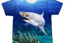 GREAT WHITE SHARK FOUR