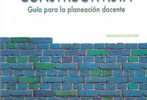Andamiaje literario estratégico / Apoyo literario en la dinámica pedagógica