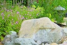 Backyard / Giant backyard needs an overhaul next summer!