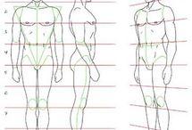 proporciones y poses