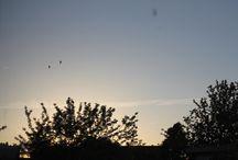 Sky / The dutch weather?? ?  ?