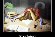 the typical student