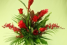 Tropicals /  Rebecca's Flower Shoppe features a range of tropical flowers year round because we love them!