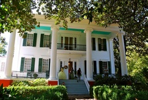 Antebellum Homes of the South