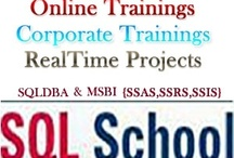 Online SQL Training / Job seekers can obtain the best online SQL training from the convenience of their home by joining the 2-month course at Learningdom.com. This web-based program creates a huge career prospect for you. Take it up for $49 at once & enjoy many benefits.